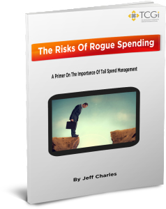 eBook: The Risks of Rogue Spending