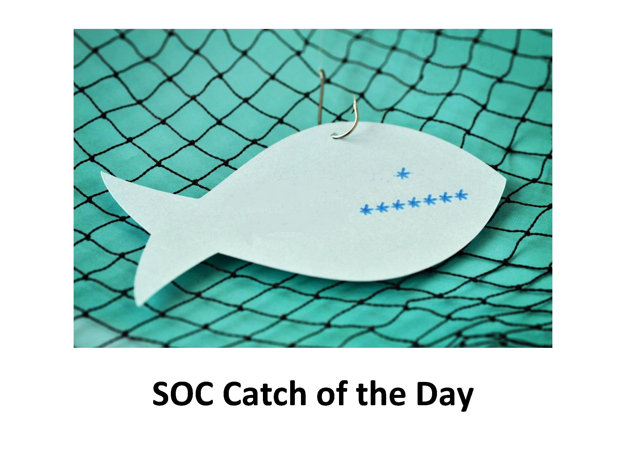 Netsurion SOC Catch of the Day